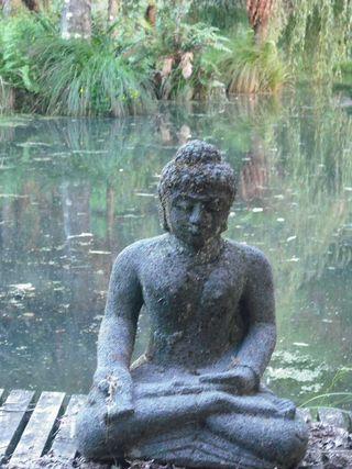 Buddhafound