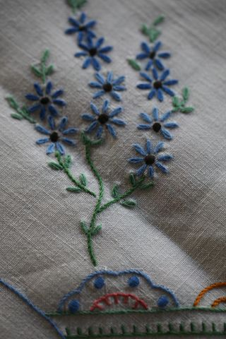 Crinolineflowers