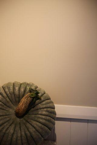 Pumpkinstilllife2