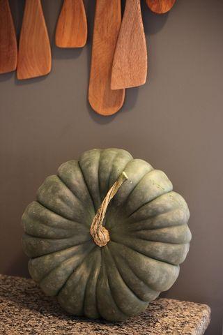 Pumpkinstillife1