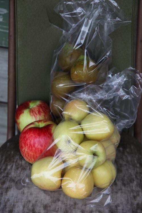 Nelsonfruit