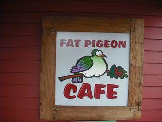 Fatpigeon